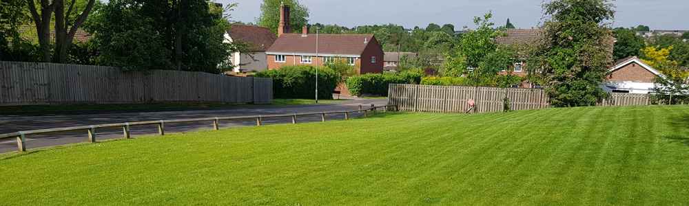 Grounds maintenance, gardening, arboreal work, Ely, Cambridgeshire, UK